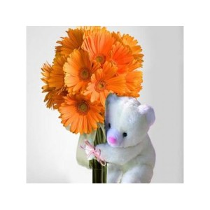 Gerberas with Teddy