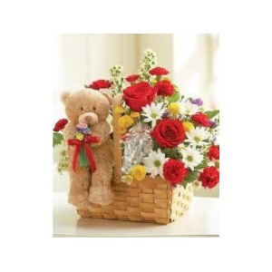Basket with Teddy